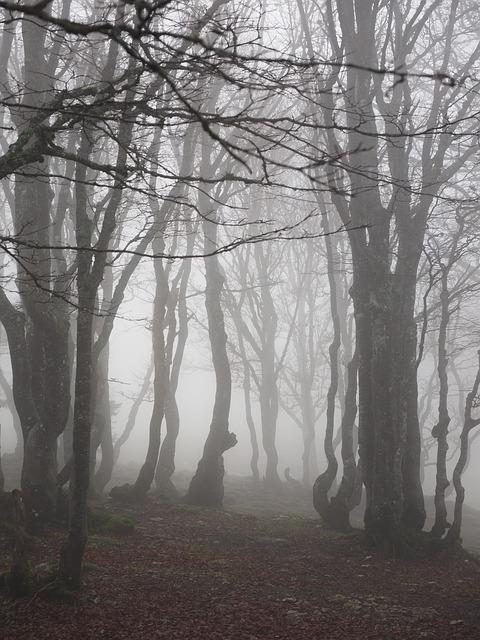 Stories of Ghost Hunting with Luke Naliborski